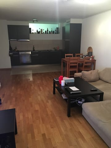 Spare room near the city center - Lausanne - Appartement