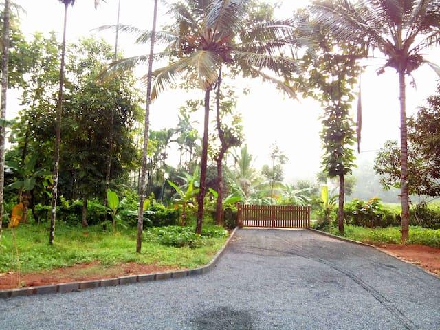 Kabani Riverside, Mananthavady - Mananthavady - House