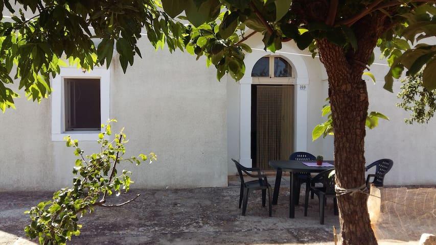 CASA IN PIETRA in Valle D'Itria (Bari)