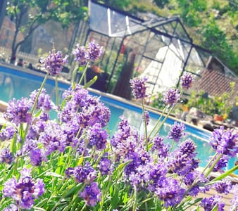 'Naustet' -  Cozy guesthouse - Villa Sorgenfri