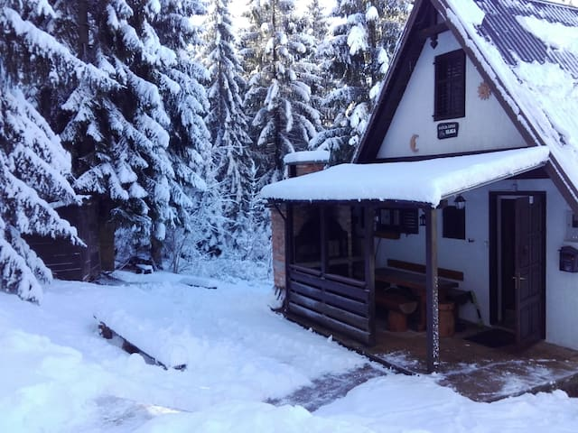 House in Gorski kotar, green heart of Croatia - Ravna Gora - Chalet