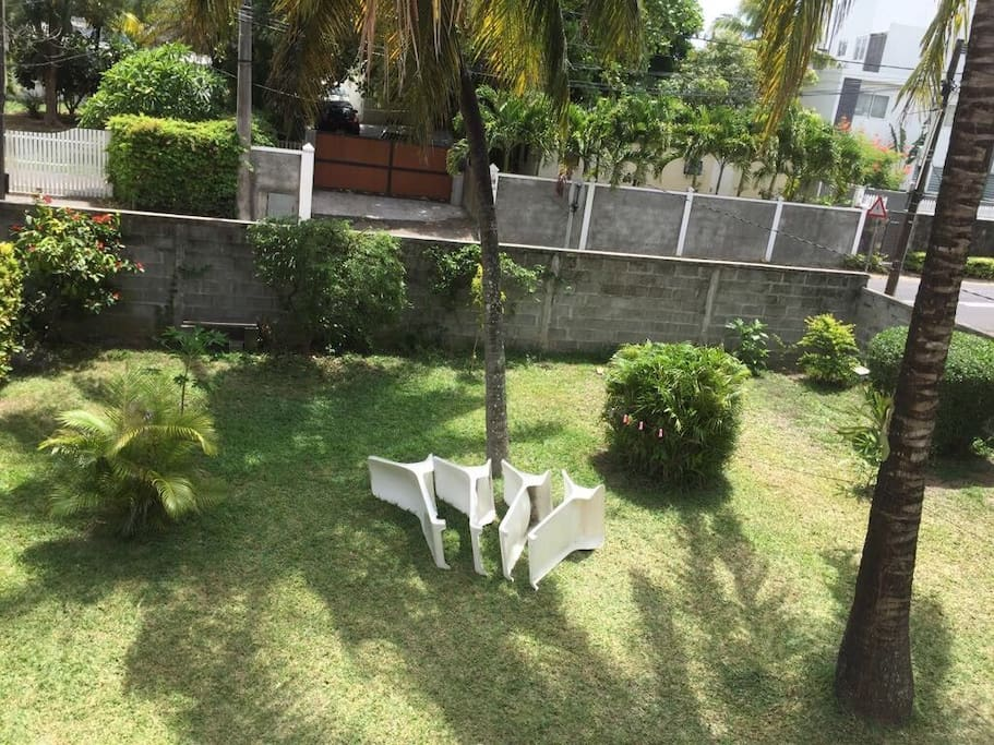 Your private large garden with fresh coconut and shadow from the palm trees