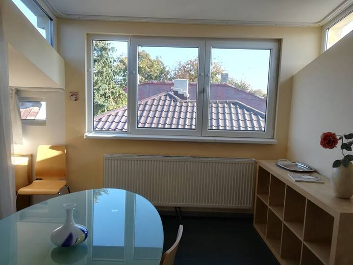 Apartment studio in the city centre