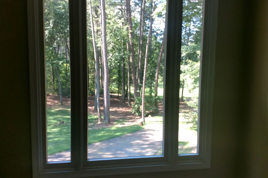 Gorgeous view from the master bedroom. It is not uncommon to wake to a family of deer standing in the woods outside the bedroom window.