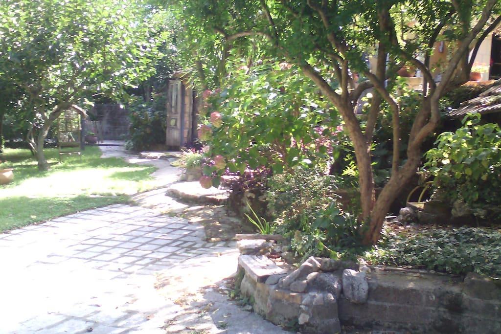 parte di giardino