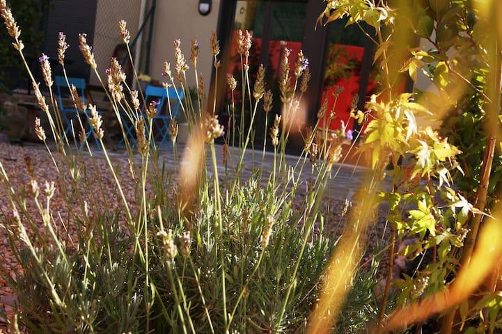 Cerca del Pirineo jardín y desayuno - Yesa