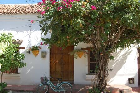 Casa Paloma, un rincón colonial para descansar!