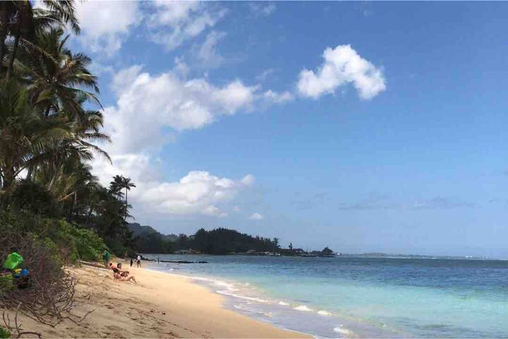 Joyful Beachfront Hale Free Parking Swim & Snorkle
