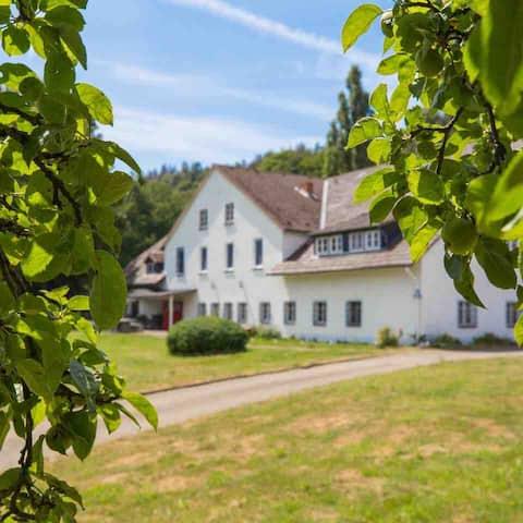 Little Landsitz Lippoldsberg
