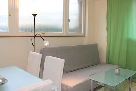Big (62m2) Comfortable 2 Rooms + Kitchen In Center - Strasbourg - Apartment