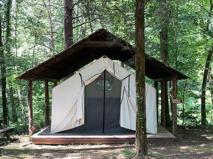 Dreamy  Glamping Tent Near Conley Bottom