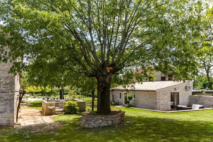 Villa Roy 2