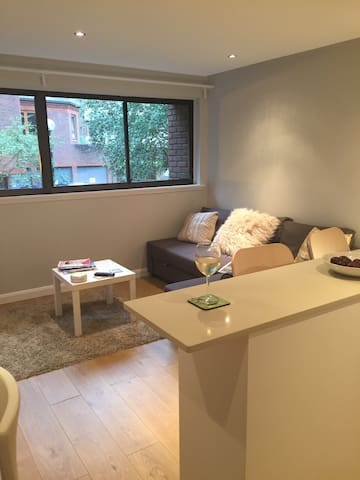 lovely mondern central Rich/d flat - Richmond - Leilighet