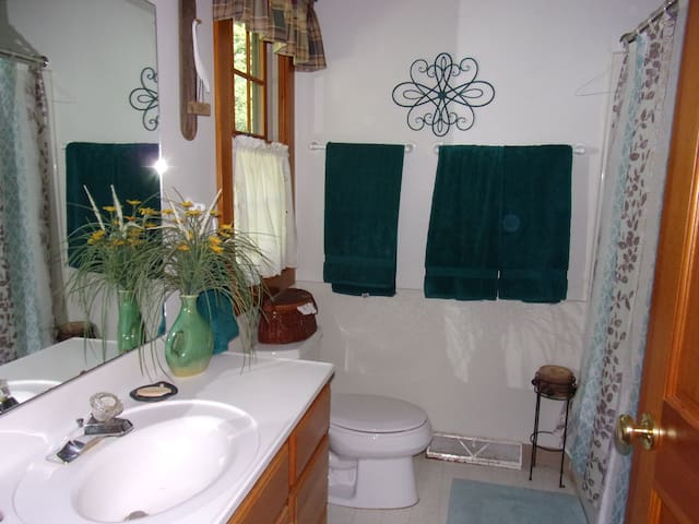 Main bath with shower over tub