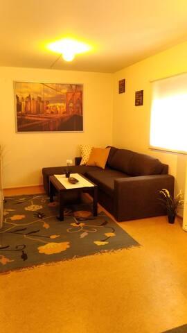 Nice studio apartment in Oslo city centre