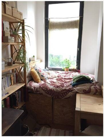 Cozy Sofa am Fenster