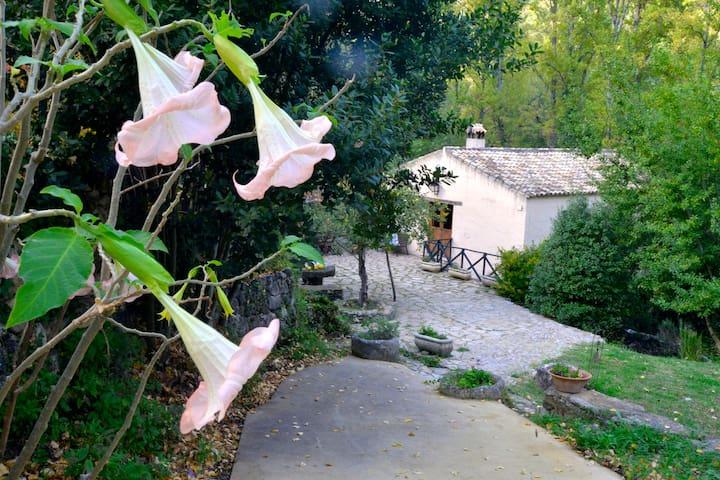 Casa Rural el Batan de Lara - Benamahoma - House