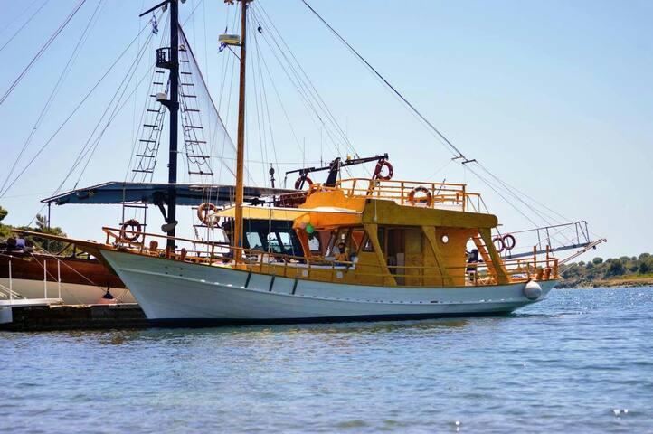 Dimitris cruises