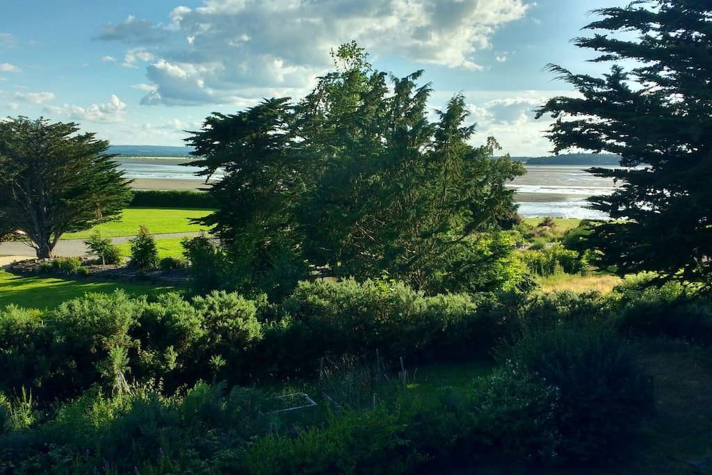 View from main bedroom window