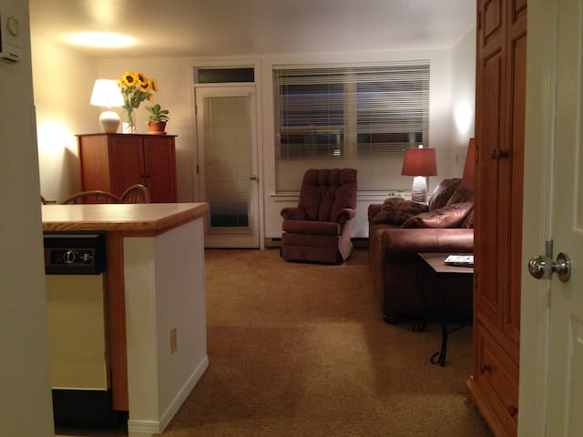 1 BR Condo - Will refund $20 for April Bookings! - Telluride - Appartement en résidence