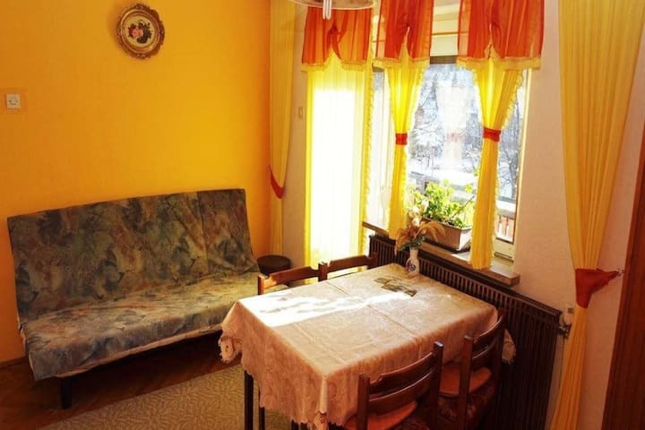 Studio with balcony Gale, Delnice - Delnice - Apartament