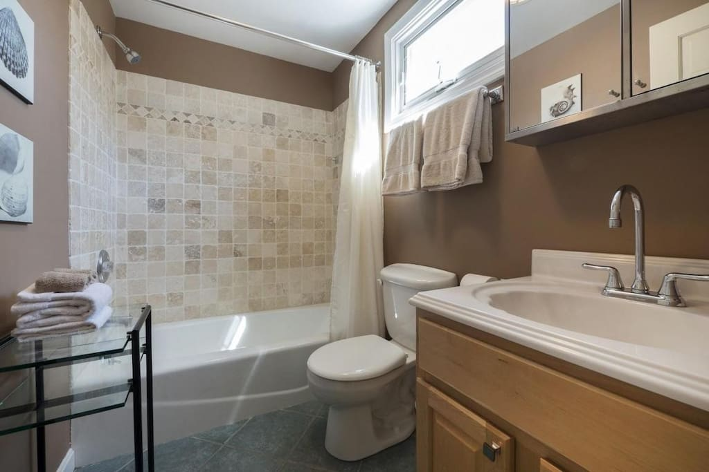 Bathroom with stand up shower and large bath tub