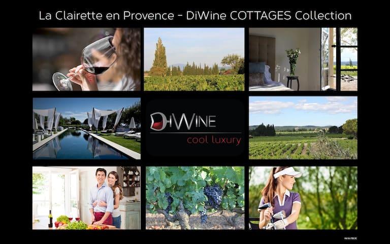 LUXE EN PROVENCE SUR VIGNOBLE DiWine - Sainte-Cécile-les-Vignes - House