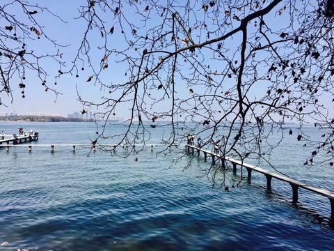 【望山】 C武汉大学校内,紧邻东湖。公交可达黄鹤楼/欢乐谷/省博物馆/江滩/海洋世界