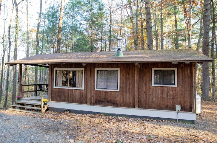 #1 Holly Cottage Pet Friendly Secluded Mnt Cabin