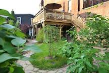 Backyard and back entrance