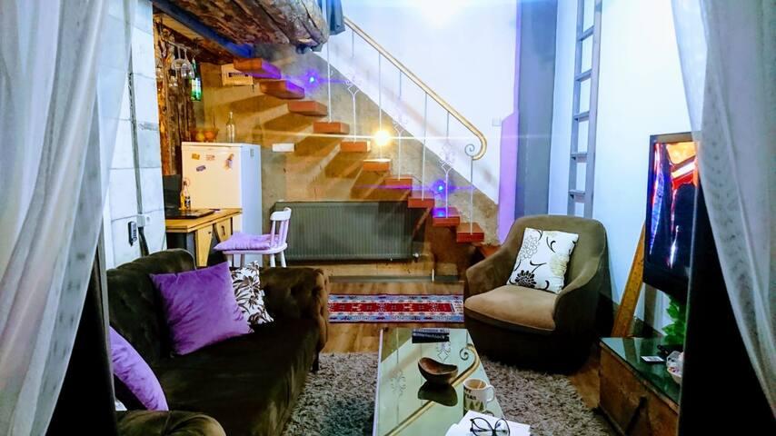 UNIQUE true LOFT villa style