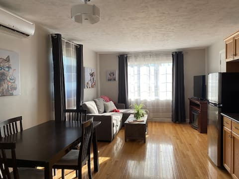 Entire apt, 1bed+sofabed, full kitchen, parking