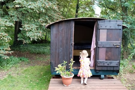 Woodcutter's Shed