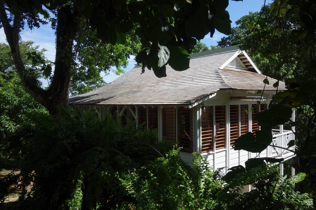 The wooden louvers on windows of the Garden Cottage provide privacy, but it is surrounded by trees and tropical flowers