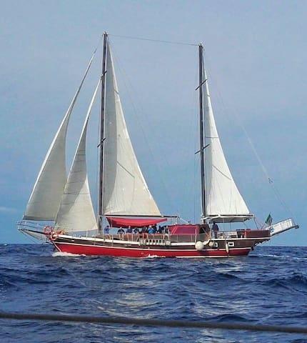 Bed on board Veliero 24 mt 5 cabine/bagno privato