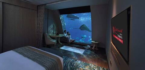 Ocean suite 海底套房