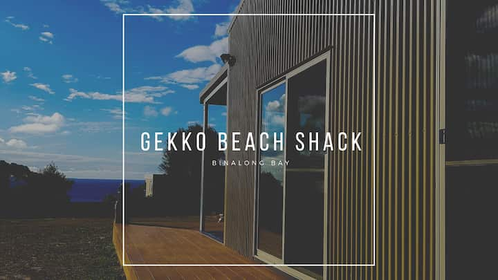 Gekko 'Beach Shack'