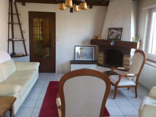 B&B Spacious house up to 7 guests -Basel World/Art - Saint-Louis - House