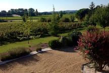 Our beautiful garden views. Notre belle jardin views.
