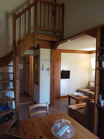 Luxury Duplex Ski apartment Montchavin PARADISKI - Landry - Apartment
