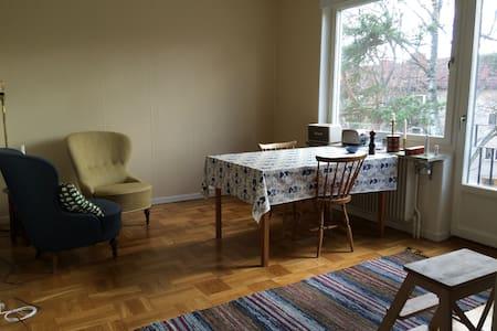 Fin lägenhet tio min från Södermalm - 斯德哥尔摩 - 公寓