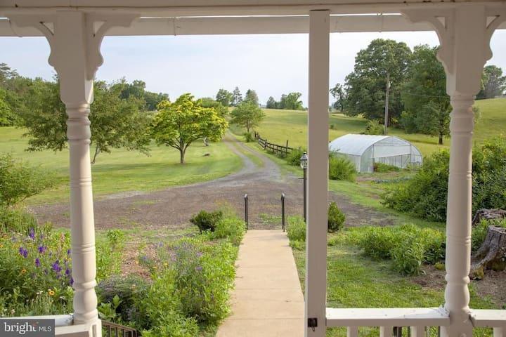 TuckerBerry Farm - green room in farmhouse