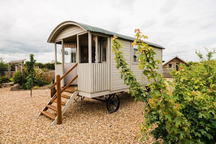 The Lincoln Longwool at West Hale Gate Glamping