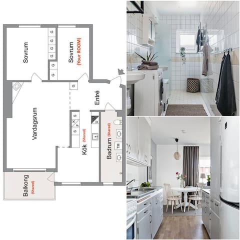 One Private room with shared Kitchen and Bathroom