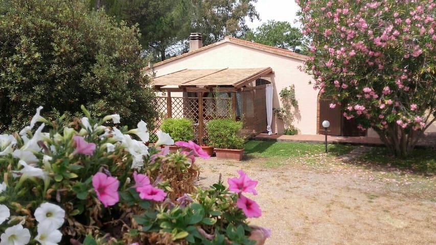 Villa con camino e piscina FOLLONICA TOSCANA