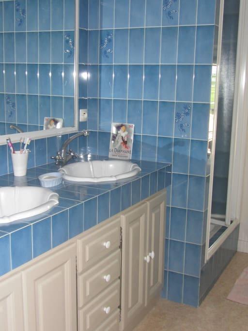 salle de bain avec douche et WC privatifs (proches de la chambre)