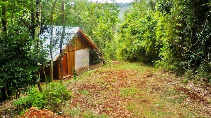 Cabañas La Familia con costa del Arroyo Paraíso