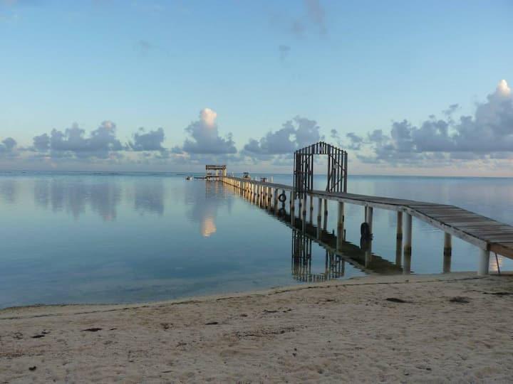 Beachfront Seadancer #5