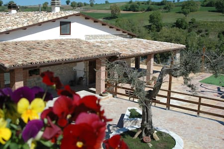 Relax in collina - Tavenna - B&B