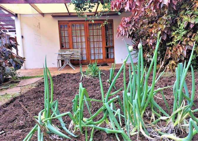 Garden studio for Postgrads or holiday makers